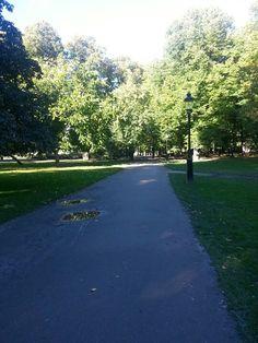 En dag i parken 2