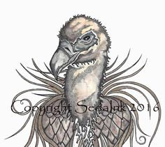 Vulture Illustration Watercolor, Pen and Ink 8x10 by SedaInk on Etsy
