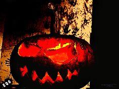 halloween,halloween,
