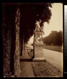 Eugène Atget (French, 1857-1927) Title: Versailles, Cyparisse par Flamen Date: 1902