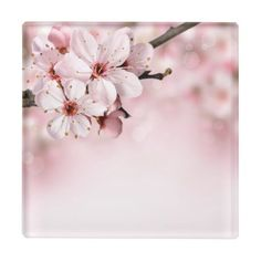 Spring border background with pink blossom. Spring border or background with pin , Beautiful Flowers Images, Flower Images, Pink Blossom, Blossom Flower, Cherry Blossoms, Caleb Y Sofia, Spring Branch, Jw Gifts, Jehovah S Witnesses