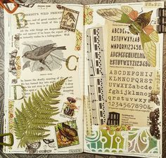 #constancerosedesigns #mtn #midoritravelersnotebook #collagejourney #collage #artjournal #vintagepaper