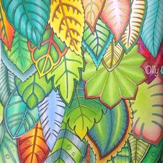 Take a peek at this great artwork on Johanna Basford's Colouring Gallery! Secret Garden Coloring Book, Coloring Book Art, Leaf Coloring, Colouring Pages, Adult Coloring, Coloring Tips, Magical Jungle Johanna Basford, Polychromos, Joanna Basford