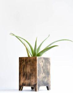 ideas for tall succulent planter cactus Contemporary Planters, Modern Planters, Large Planters, Wood Planters, Indoor Planters, Tall Succulents, Succulent Planter Diy, Garden Bulbs, Led Lampe