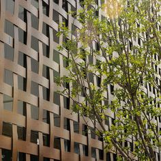 Shigeru Ban encases the new Aspen Art Museum in a woven wood façade Shigeru Ban, Wood Architecture, Architecture Details, Museum Architecture, Partition Screen, Wood Facade, Details Magazine, Outdoor Screens, Timber Structure
