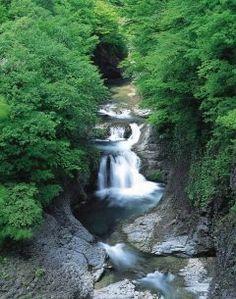 宮城県仙台市青葉区の広瀬川が新川と合流した少し下流には鳳鳴四十八滝と呼ばれている大小様々な滝が狭い谷間に折り重なるように流れ落ちる姿を見ることが出来ます  鳳鳴四十八滝は滝から響いて来る水音が伝説の鳥鳳凰の鳴き声に似ていると言われたことからその名が付いたと伝えられています  紅葉の時期におすすめなスポットですよ  tags[宮城県]