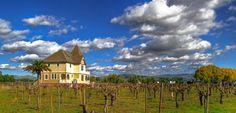 Concannon Vineyards, CA