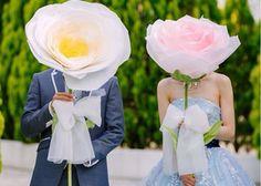 ジャイアント・ペーパーローズって知ってる?魔法みたいな大きなお花が可愛い♡