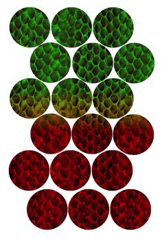 "Snake Skin green to red - Bottle cap image pack Formatted for printing on 4"" x 6"" photo paper"