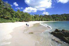 Playa de Manuel Antonio entre las más impresionantes del mundo