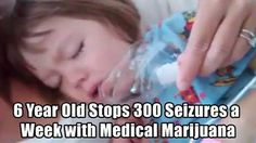 Read this incredible story how 6 year old Charlotte Figi is treated with Medical Marijuana to rid her seizures. 300 a week to zero!