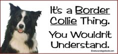 It's a BORDER COLLIE Thing - You Wouldn't Understand !  PHOTO Window Sticker