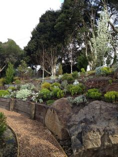 rustic landscape with big stones, flowers, plants of Landscaping Ideas for Small Spaces to Large Spaces