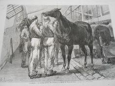 Gravure 1872 - Le Tondage général des Chevaux dans l'armée