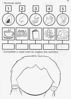 My 5 senses Kindergarten Math Worksheets, Science Worksheets, School Worksheets, 5 Senses Activities, Hands On Activities, Educational Activities, Five Senses Worksheet, Drawing Lessons For Kids, Spanish Teaching Resources