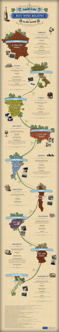 A Guide to the Best Wine Regions in the World Infographic #wine #wineeducation