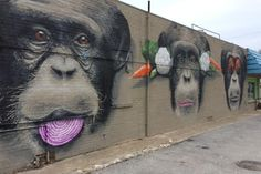 The Monkeys - Autumn Reo Fort Worth - Side wall of Lettuce Cook at 5101 White Settlement Rd. Fort Worth Texas, Texas Travel, White Settlement, Road Trippin, Strike A Pose, Local Artists, Community Art, World Traveler, Pokemon Go