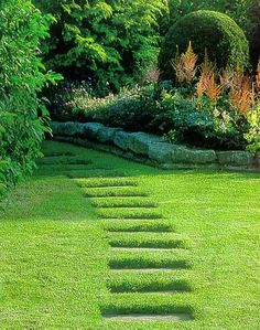 A garden with a defined path can be considered an example of a promenade. It has positive freedom because although it has a defined path can constrains your line of movement, you are free to look around in different directions as you walk and experience the beautiful scenery.