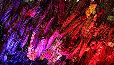 floral art images - Google Search