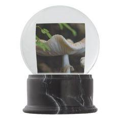 Toadstool Umbrella Snow Globe - photography gifts diy custom unique special