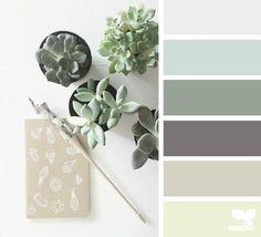 Succulent hues: