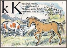 Learning About the Czech Alphabet Alphabet Words, Alphabet Print, English Alphabet, School Posters, Make A Donation, English Language, Textbook, Moose Art, Teaching