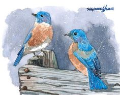 ACEO Limited Edition 2/25 - Bluebirds in snow