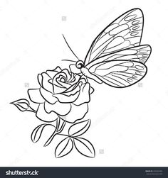 blooming rose small bud and leaf. Black easy drawing line art tattoo . Tattoo Outline Drawing, Outline Drawings, Easy Drawings, Butterfly Coloring Page, Small Butterfly Tattoo, Line Art Tattoos, Luxury Flowers, Blooming Rose, Flower Pictures