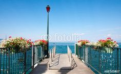 Ponton sur le Lac Léman Adobe, Images, Camping, Plants, Lake Geneva, Campsite, Cob Loaf, Plant, Outdoor Camping