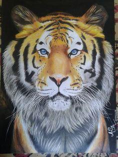 Tigre feito com lápis de cor, fundo pintado com Nanquim, detalhes feito com canetas coloridas, caneta marcador colorida, tinta guache. Tamanho do Desenho 65x48