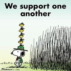 Snoopy and Woodstock Art Beagle, Snoopy Beagle, Beagle Puppy, Camp Snoopy, Snoopy Und Woodstock, Woodstock Bird, Snoopy Pictures, Snoopy Quotes, Peanuts Quotes
