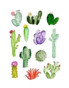Quizá un cactus   desdelprobadorblog.es