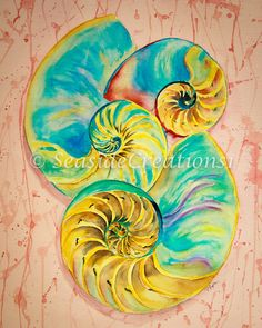 Seashell Watercolor Print - Tropical Painting of Nautilus Shells - Beach house Decor by SeaSideCreations1 on Etsy