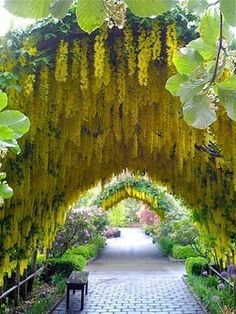 Bayview Farm and Garden - South Whidbey Island, Langley, Washington.