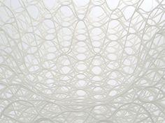 Ryuji Nakamura Architects (Japón)