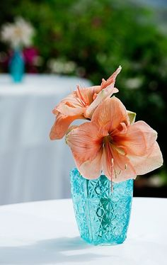 Coral beach wedding glass decor, 2014 Beach wedding reception ideas, Coral beach wedding glass and flower decor
