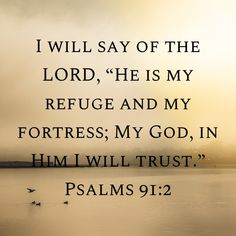 """Psalms I will say of the LORD, """"He is my refuge and my fortress; My God, in Him I will trust. Bible Verses Quotes Inspirational, Encouraging Bible Verses, Bible Encouragement, Prayer Scriptures, Religious Quotes, Scripture Verses, Faith Quotes, Bible Quotes, Christian Food"""