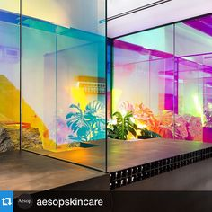 and cool with bright and vibrant colors. with ・・・ Aesop Wynwood, FL - a vibrant Miami space created in collaboration with and cool with bright and vibrant colors. with ・・・ Aesop Wynwood, FL - a v. Display Design, Store Design, 80s Design, Window Film, Glass Film, Wall Wallpaper, Office Interiors, Retail Design, Installation Art