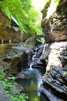 Finger Lakes Region of New York, Watkins Glen State Park...the Gorge trail.