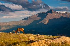 50 states, 50 spots: Natural wonders featuring Rocky Mountain National Park via @CNN