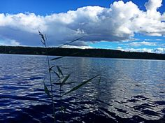 Hi 🌿 #nature #lake #plant #sky #clouds #amazing #colorful #forest #adventure #pic #photo #photography #trave #pure MYRG