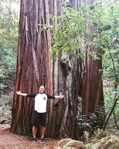 Standing in front of an awesomely big #redwood tree after a #hike in #heritagegrove in #california #holishay #travel #callyforniacation