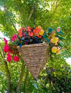 WSHG.NET | Dress Up the Summer Garden | Featured, For The Garden | July 28, 2014 | WestSound Home & Garden