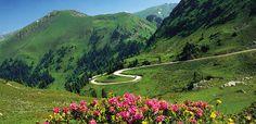 Sigue la Ruta Nocklam y conoce los mejores paisajes de Austria - http://www.absolutaustria.com/6313-2/