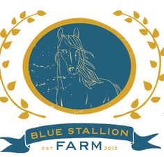 Blue Stallion FarmBlue Stallion Farm | Arabian Horse Breeding Farm near Miami & Hollywood, Florida