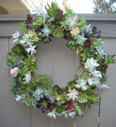 succulent planting ideas (15)