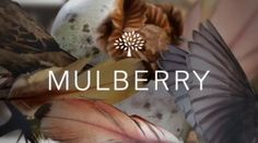 Mulberry AW11 Film by F.TAPE. Tim Walker shoots Julia Saner and Tati Cotliar for Mulberry's AW11 Fashion Film.