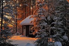 A Little House In Snowy Forest - Lonely Little Houses Lost In Majestic Winter Scenery