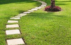 Image result for stepping stones across lawn