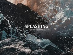 """Made With Creative Market """"Typography"""" Contest: Winner Announcement Lake Photos, 6 Photos, Close Up Photos, Stock Photos, Earth Day Images, Advent, Winner Announcement, Flower Close Up, Thistle Flower"""